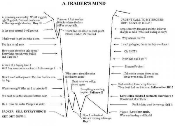Umysł tradera